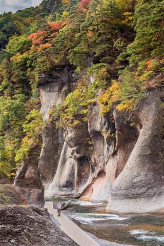 iPhone Wallpaper Japan, Gunma, rocks, canyon, river, trees, autumn