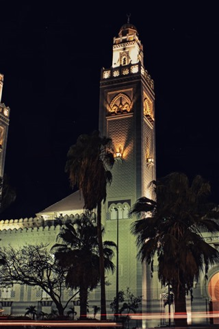 iPhone Wallpaper Mosques, trees, night