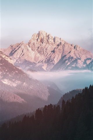 iPhone Wallpaper Nature landscape, mountains, valley, forest, fog