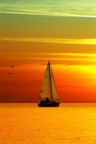 iPhone Wallpaper Sea, sailboat, birds, beautiful sunset landscape