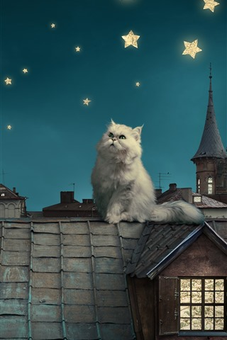 iPhone Wallpaper White cat, roof, moon, stars, creative picture