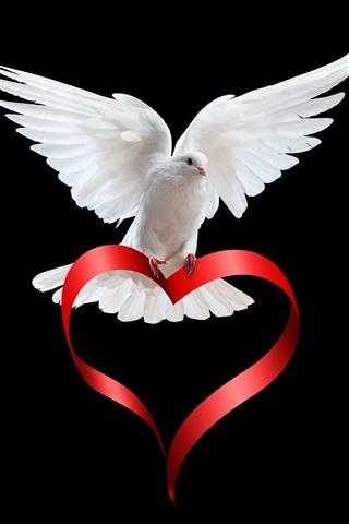 iPhone Wallpaper White dove, love heart ribbon, black background
