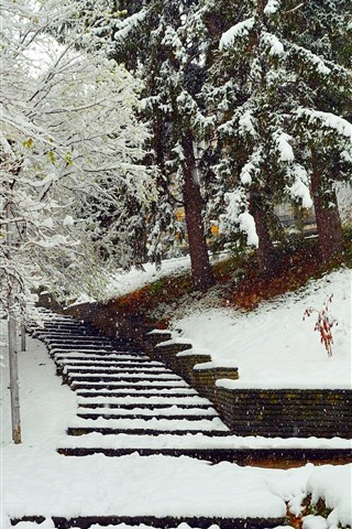iPhone Wallpaper Winter, snow, trees, stairs