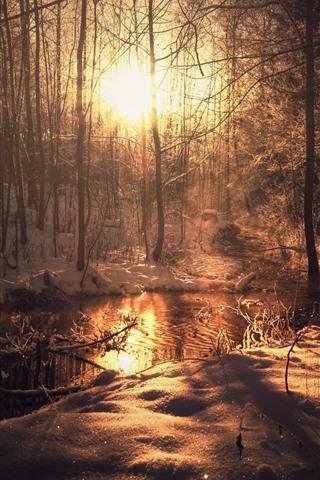 iPhone Wallpaper Winter, trees, snow, river, sun rays, morning