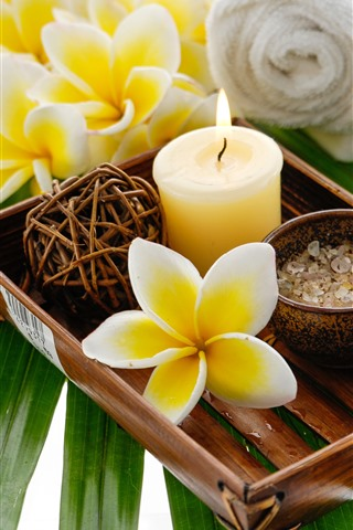iPhone Wallpaper Yellow flowers, plumeria, candle, SPA