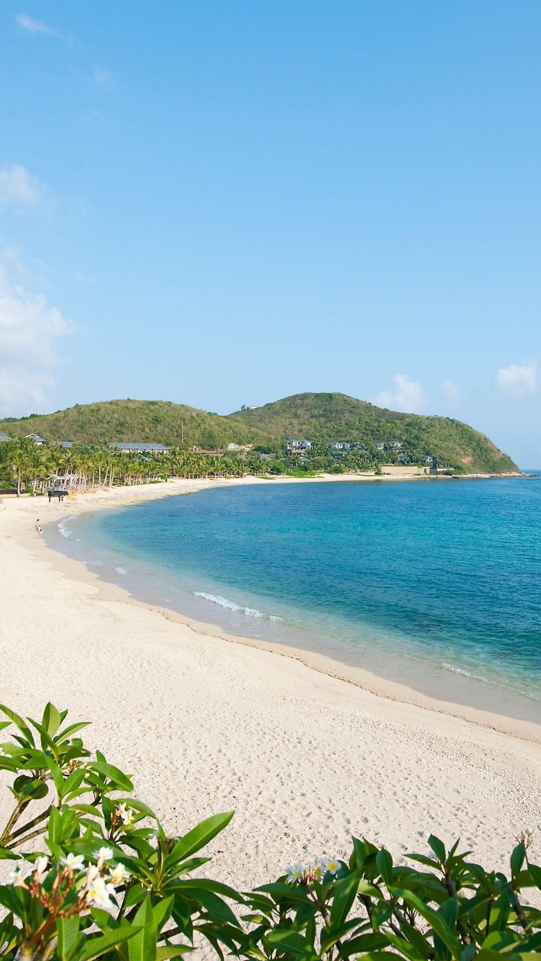 Beach Sea Palm Trees Tropical Blue Sky 1080x1920 Iphone