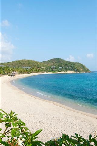 iPhone Papéis de Parede Praia, mar, palmeiras, tropical, céu azul