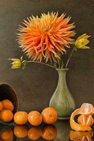 iPhone Wallpaper Chrysanthemum, tangerines, vase, cup, still life