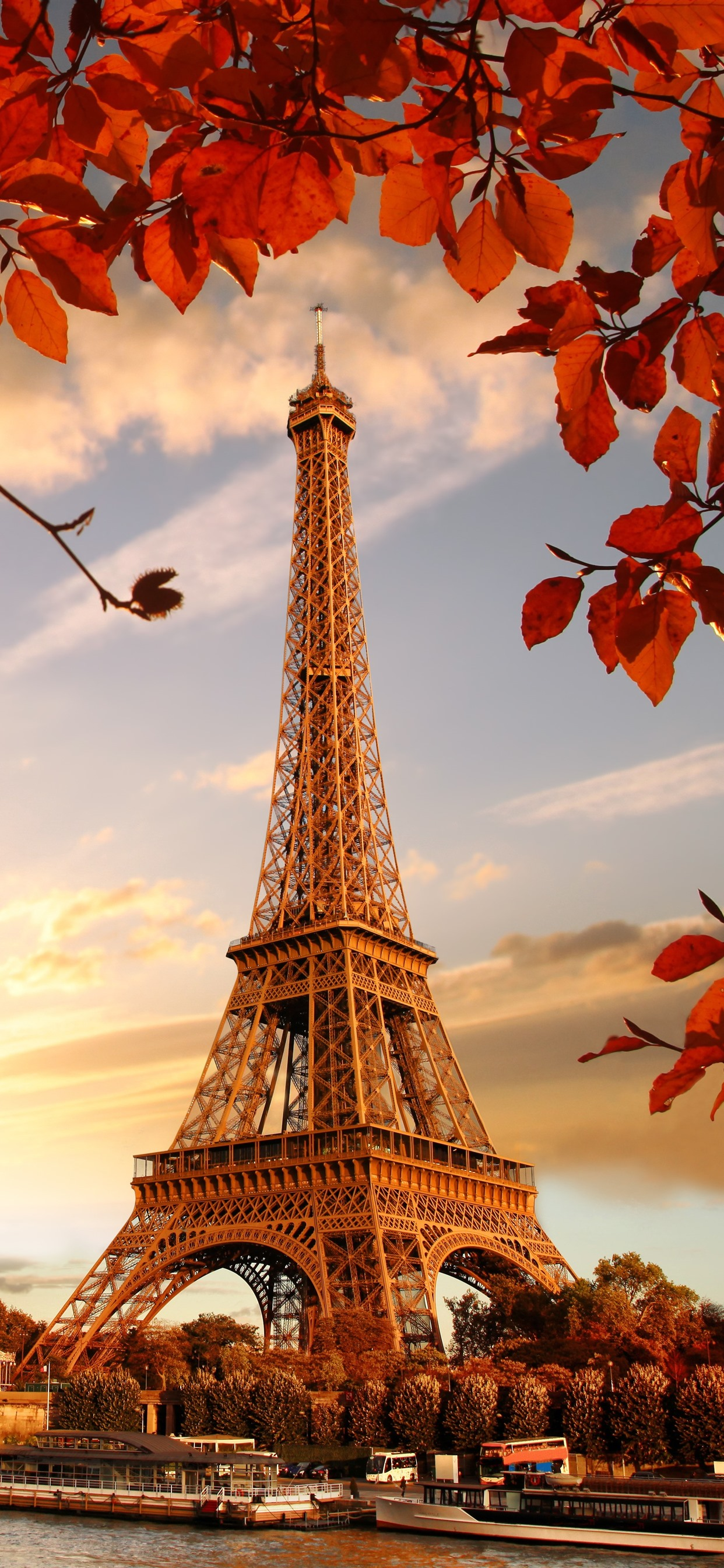 Eiffel Tower Red Leaves Twigs Autumn 1242x2688 Iphone Xs