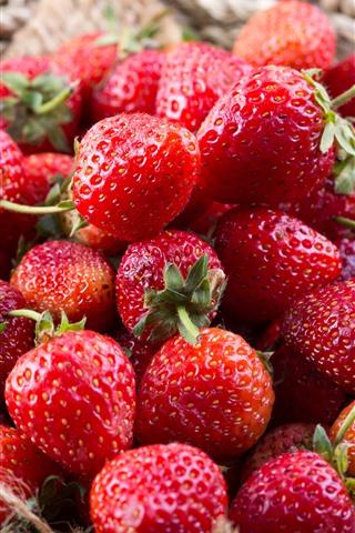 iPhone Wallpaper Fresh strawberries, basket, fruit
