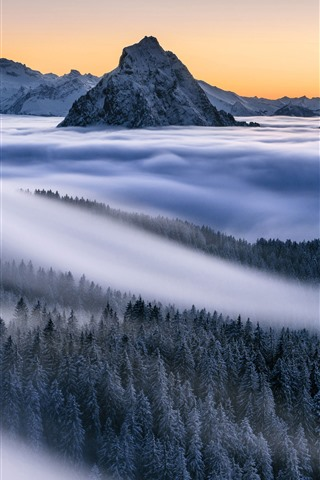 iPhone Wallpaper Mountains, fog, forest, trees, Alps, nature landscape