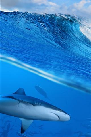 iPhone Wallpaper Sea waves, water splash, shark, underwater
