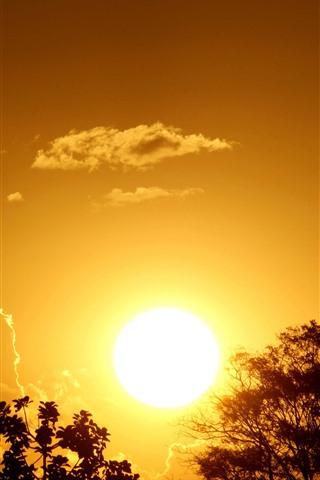 iPhone Wallpaper Sunset, sun, glare, trees, clouds, plane