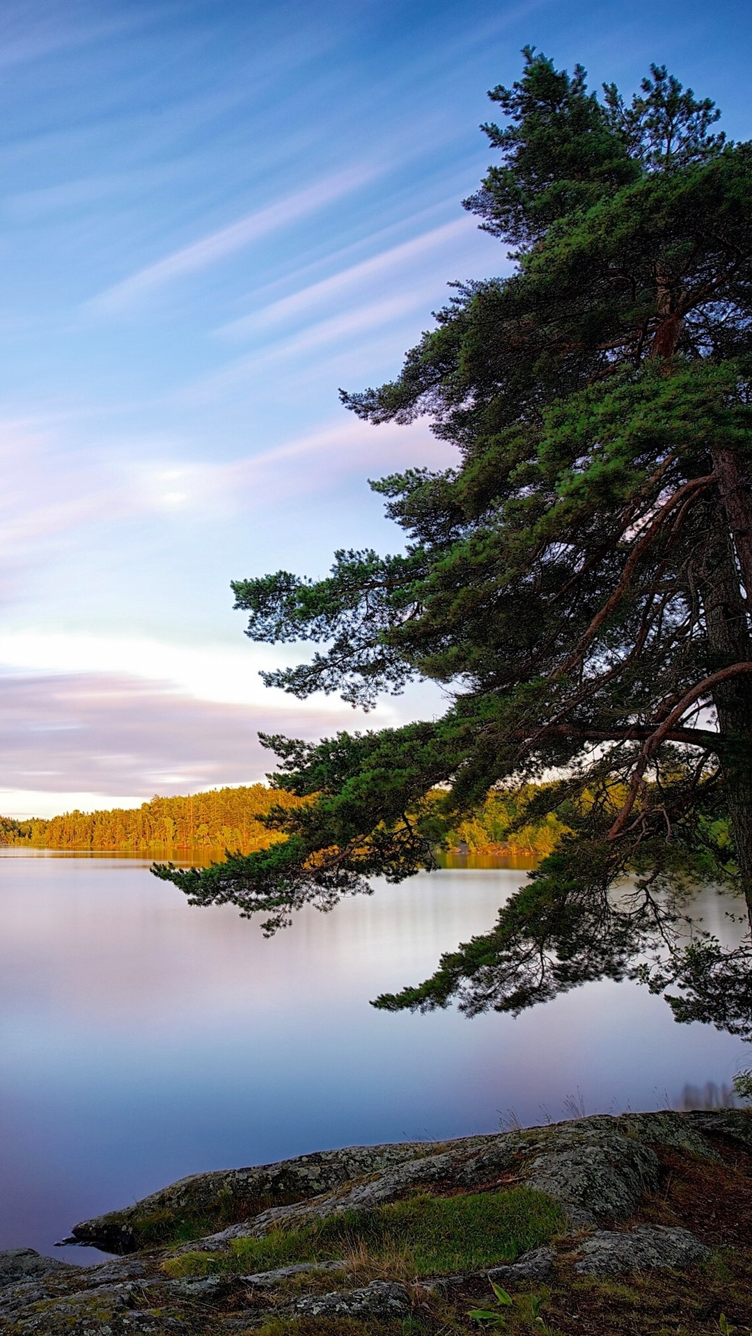 Sweden, lake, trees, nature landscape 21x21 iPhone 21/21/21/21S ...