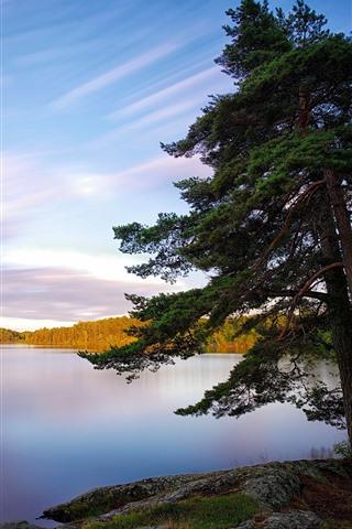 iPhone Wallpaper Sweden, lake, trees, nature landscape