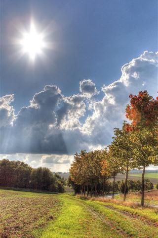 iPhone Wallpaper Trees, grass, clouds, sun, autumn