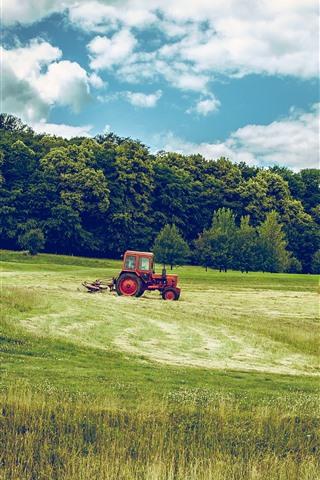 iPhone Wallpaper Trees, grass, fields, tractor, clouds, green