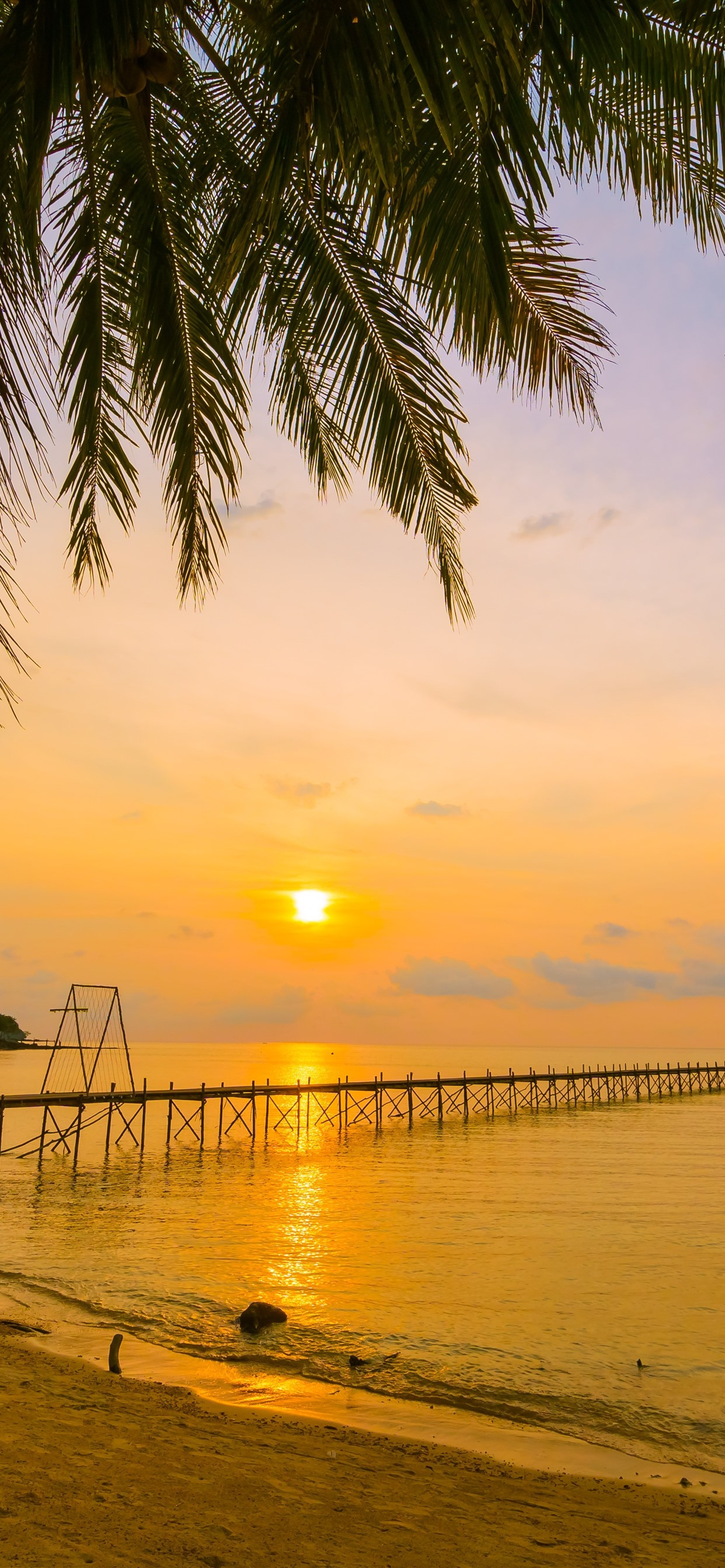熱帯 夏 ビーチ 海 ヤシの木 桟橋 日没 1242x26 Iphone 11 Pro Xs Max 壁紙 背景 画像