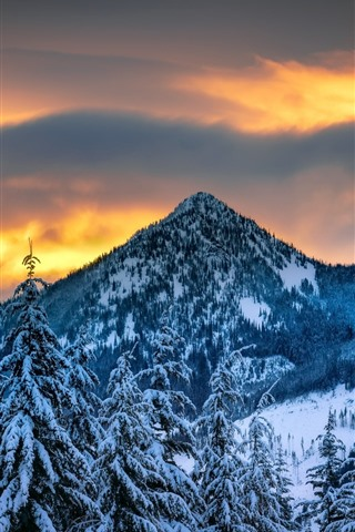 iPhone Wallpaper Winter, mountains, trees, snow, dusk