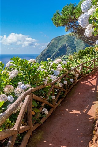 iPhone Wallpaper Azores, Sao-Miguel, flowers, footpath, sea