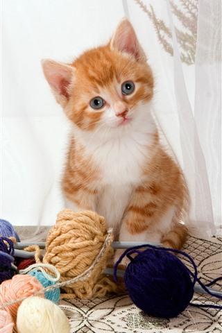 iPhone Wallpaper Cute kitten and wool balls