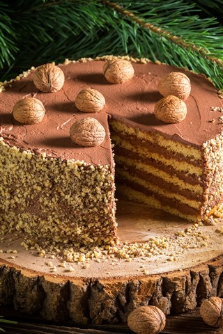 iPhone Wallpaper Delicious chocolate cake, dessert, nuts, spruce twigs