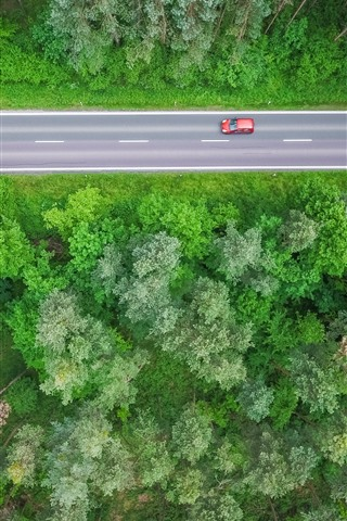 iPhone Wallpaper Forest, trees, top view, road, car