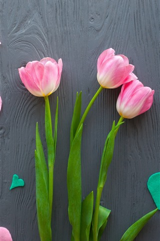 iPhone Wallpaper Pink tulips, love hearts, romantic