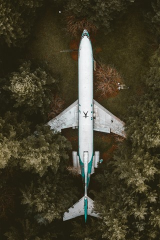 iPhone Wallpaper Plane, forest, top view