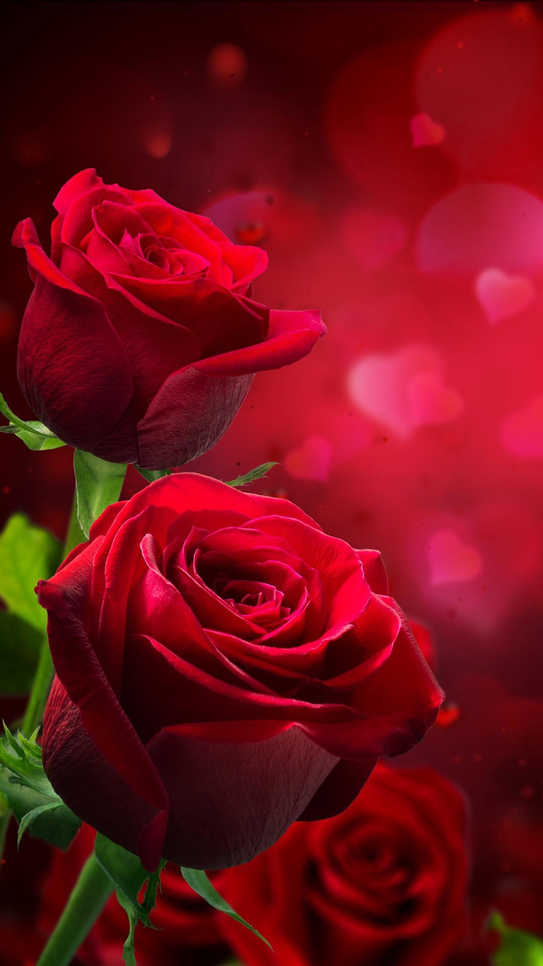 Red Roses Love Hearts Hazy Romantic 1242x2688 Iphone 11 Pro Xs