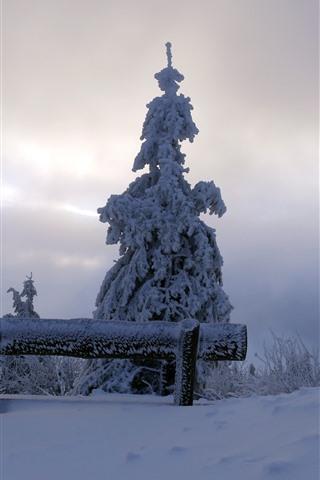 iPhone Wallpaper Snow, trees, bench, winter, dusk