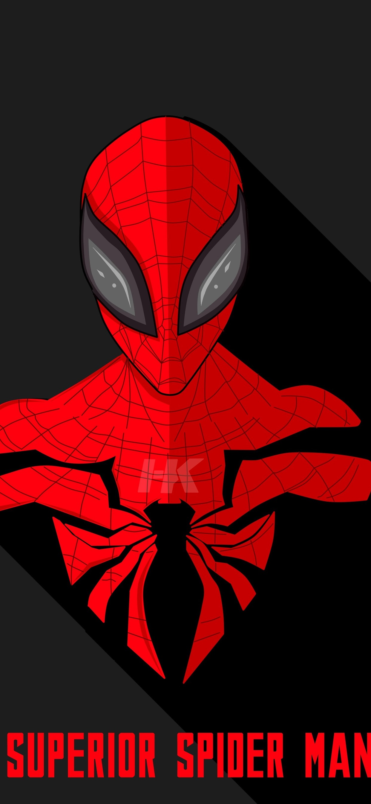 Spider Man Dc Comics Hero 1242x2688 Iphone Xs Max Wallpaper
