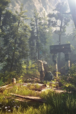 iPhone Wallpaper The Witcher 3, forest, sun rays