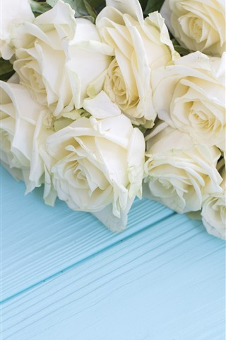 iPhone Wallpaper White roses, blue wood board