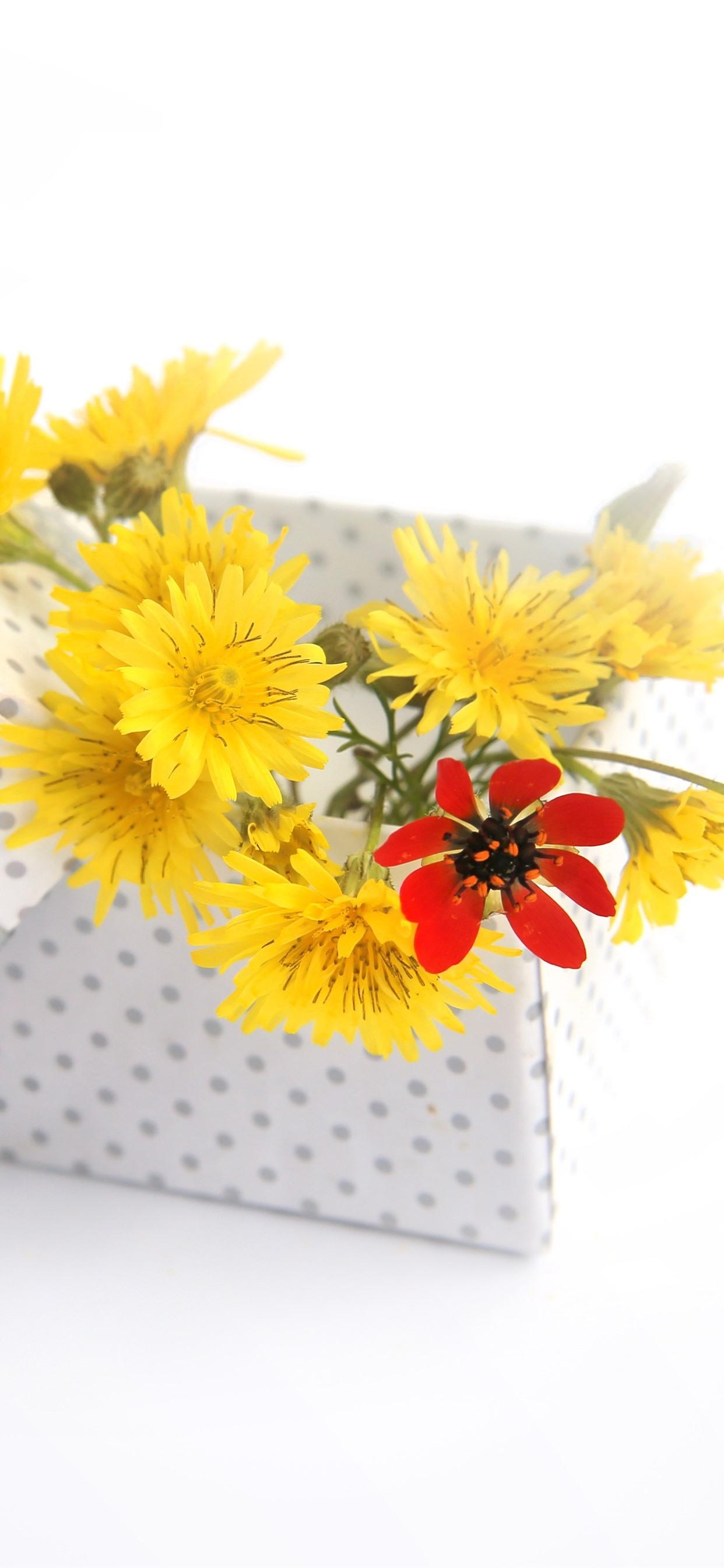 Yellow Flowers Box Gift White Background 1242x2688 Iphone 11