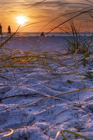iPhone Wallpaper Beach, sands, grass, sunset