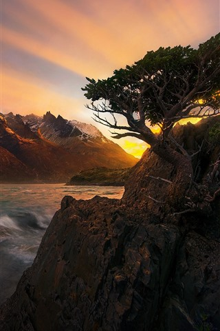 iPhone Wallpaper Beautiful sunset, rocks, tree, mountains, sea