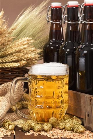 iPhone Wallpaper Beer, foam, wheat, hops, bottles