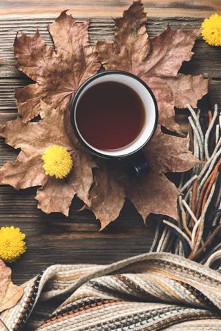 iPhone Wallpaper Coffee, maple foliage, sweater, scarf