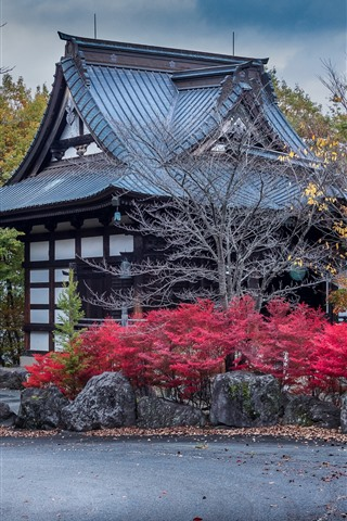 iPhone Wallpaper Japan, Numata, houses, trees, autumn