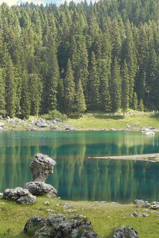 iPhone Wallpaper Lake Carezza, trees, Italy