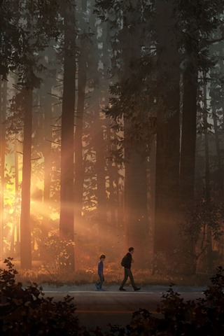 iPhone Wallpaper Life is Strange 2, game art picture, forest, sun rays