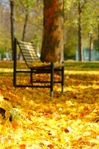 iPhone Wallpaper Many golden maple leaves, bench, trees, autumn, park