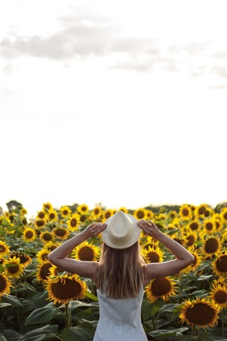 iPhone Wallpaper Many sunflowers, girl, back view, summer