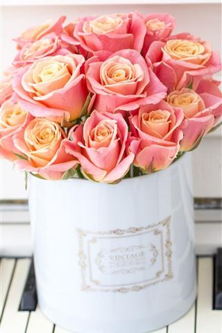 iPhone Wallpaper Pink roses, piano