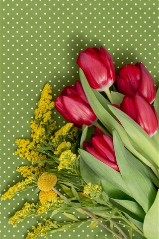 iPhone Wallpaper Red tulips, light green background