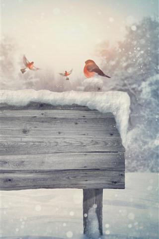 iPhone Wallpaper Snow, wood board, birds, winter, creative picture