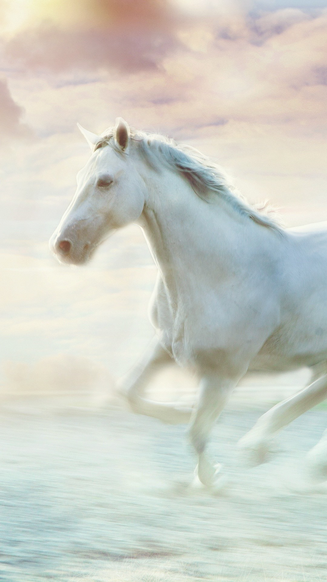 White Horse Running Water Art Picture 1080x1920 Iphone 8766s