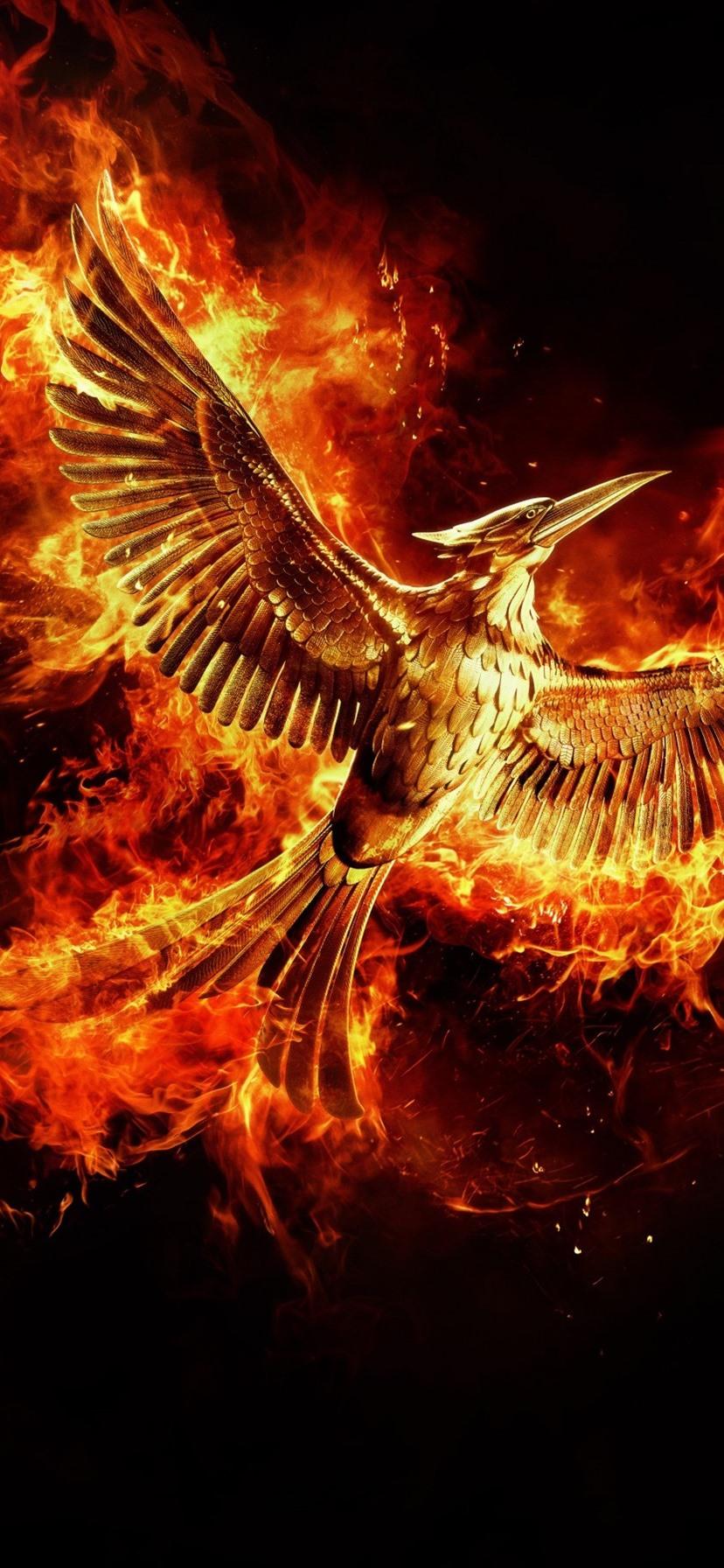 Beautiful Phoenix Wings Flight Fire Black Background