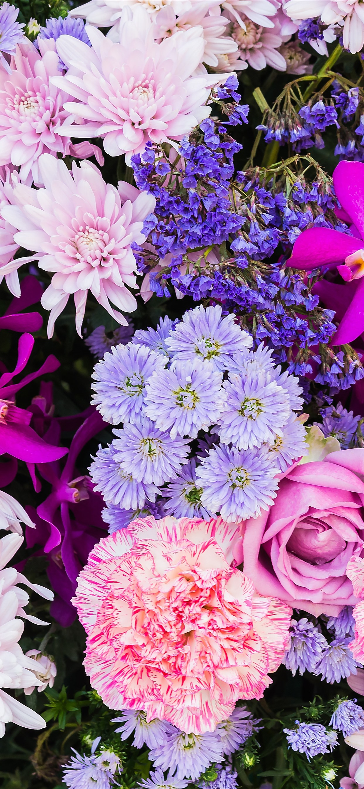 Colorful Flowers Many Kinds Petals 1242x2688 Iphone Xs Max